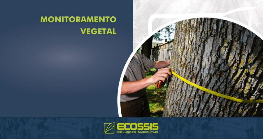 Monitoramento Vegetal
