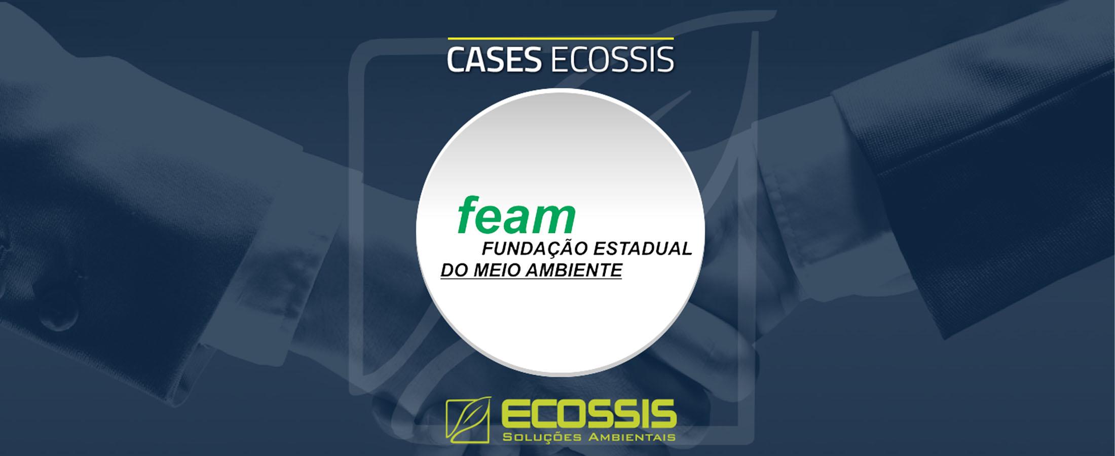 Avaliação de Impacto Ambiental para a FEAM de Minas Gerais