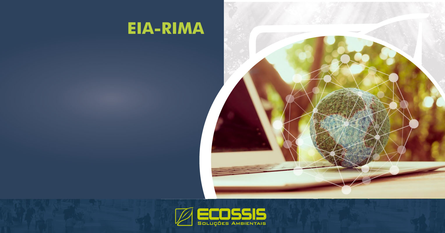 Estudo e Relatório de Impacto Ambiental EIA RIMA